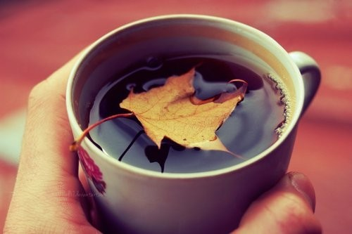 autumn_tea_by_all17-d5fivui_large.jpg
